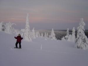 2008-akaskero-hundeschlitten-77