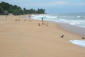srilanka-013