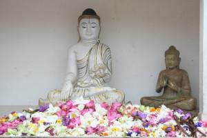 srilanka-105
